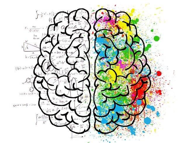 What Is A Keystone Habit -- The brain & neuroscience
