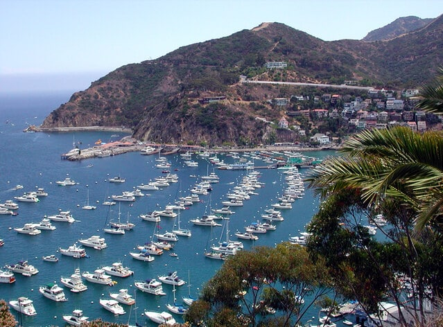 What to do in Santa Catalina Island